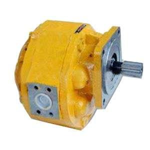雷竞技齿轮泵15