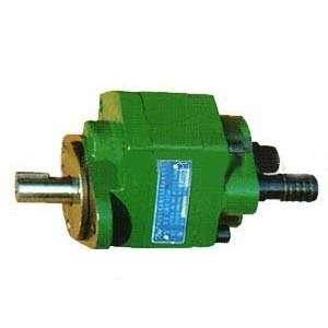 雷竞技齿轮泵24