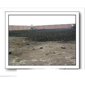 鸡粪有机肥厂生物有机肥专供