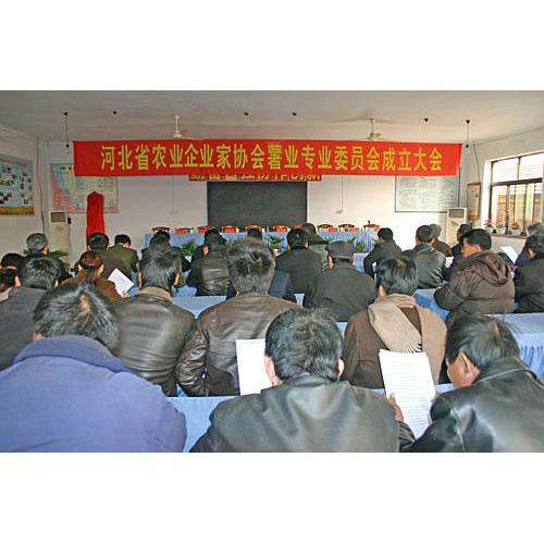 河北省农业产业协会薯业专业委员会成立大会