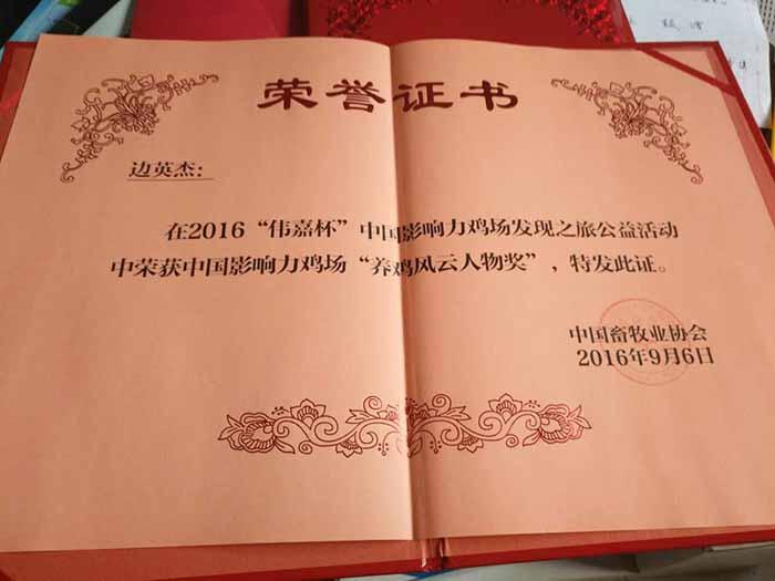 """中国影响力鸡场""""养鸡风云人物奖"""""""