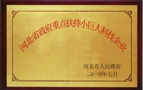 河北省政府重点扶持小巨人科技企业
