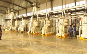 辛集德瑞淀粉 日处理300吨 玉米胚芽预榨生产线