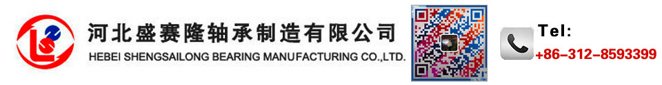 HEBEI SHENGSAILONG BEARING MANUFACTURING CO.,LTD.