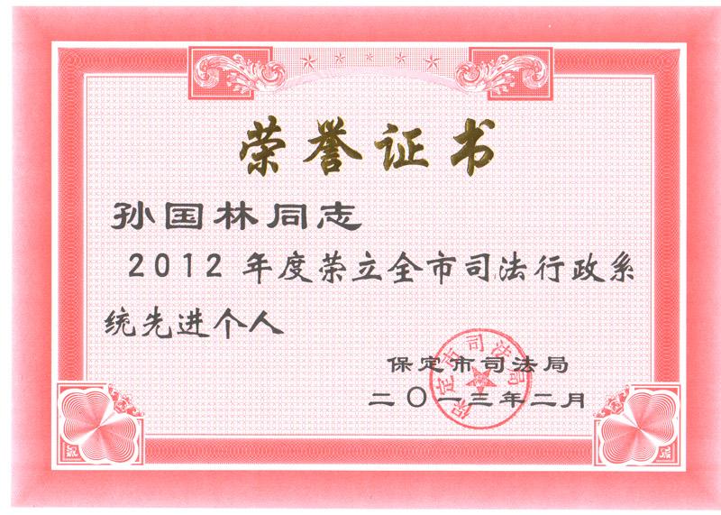 孙国林荣誉证书