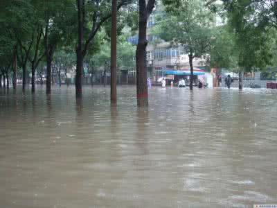 雨后场景.jpg