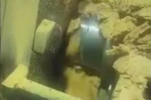 黄豆生产线安装调试成功