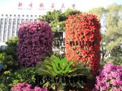 北林立体花坛