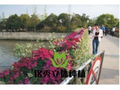 护栏立体绿化
