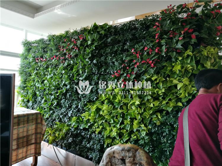 铭秀植物墙案例集-17年 如家酒店