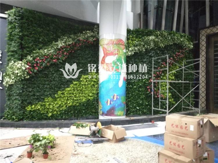 铭秀植物墙案例集-17年 天山海世界