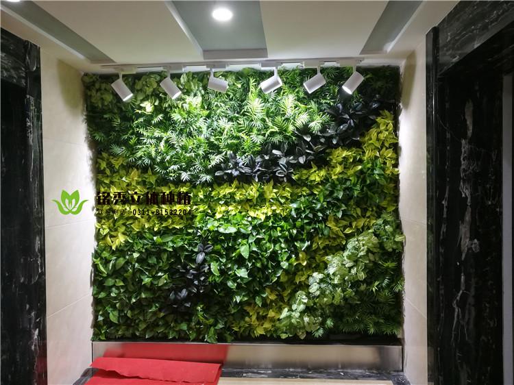 铭秀植物墙案例集-17年 天州国际