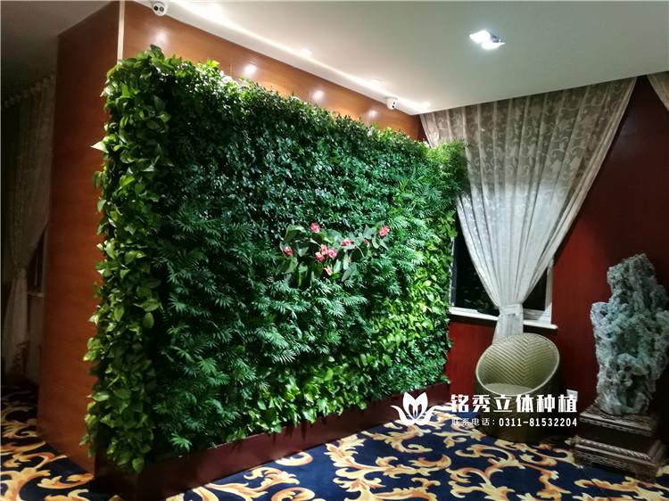 铭秀植物墙案例集-17年 长安颐园