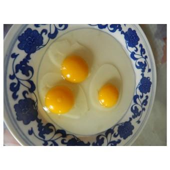 柴鸡蛋(1)