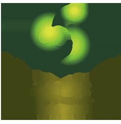 广州市梵朵生物科技有限公司