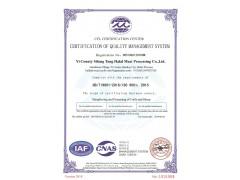質量管理體系認證證書(英)