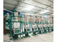 中型面粉机械