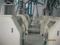 100t面粉機設備