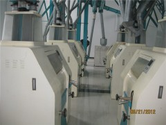 100t面粉設備