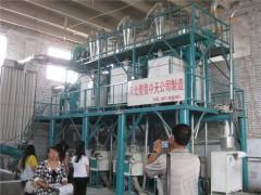 中型80噸面粉機