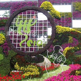 植物+工艺品个性化造型