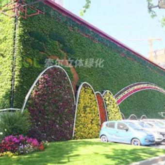 车库立体绿化的形式