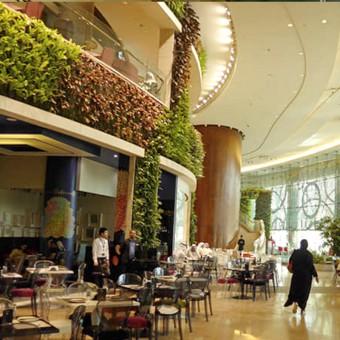 餐厅景观提升