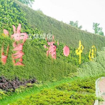 环岛/绿地/绿化带景观提升