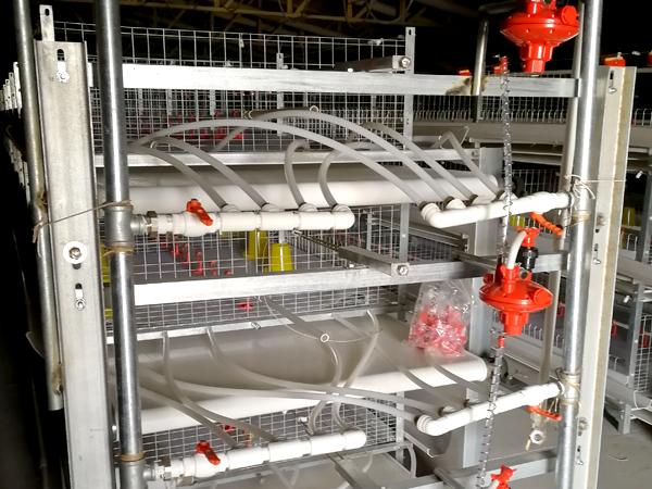 鸡舍内部取暖设备