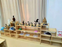 辛集幼儿园科学实验室