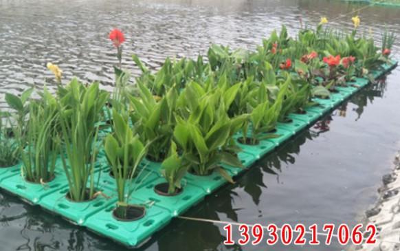 天津市北环河生态治理